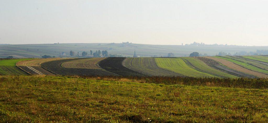 Szlakiem Orlich Gniazd pieszo