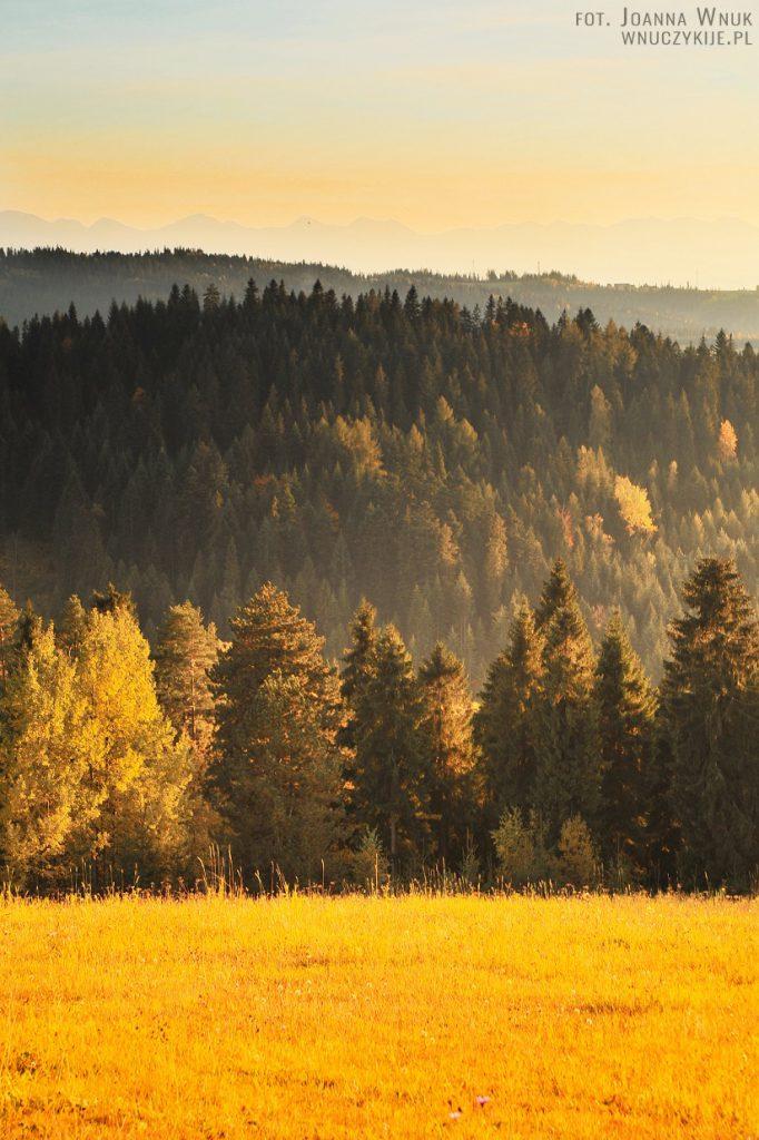 Gorce jesienią