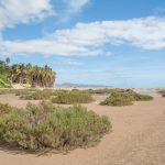 Która Wyspa Kanaryjska zimą będzie najlepszym wyborem?